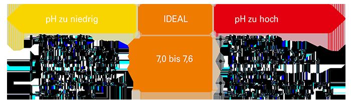 Schema zum pH Wert
